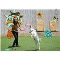 Aerobie Superdisc 25cm - modrá
