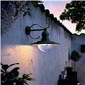 Philips Topiary 01816/30/PN