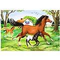 Ravensburger Svět koní