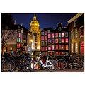 Dino Noční Amsterdam Neon