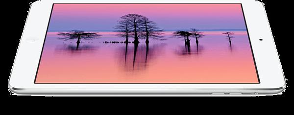 Amazing 7.9-inch display