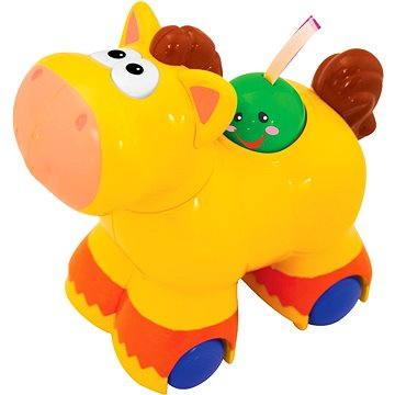Jezdící poník