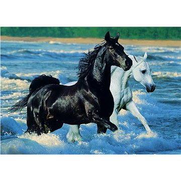 Ravensburger Koně na pláži