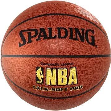 Spalding NBA Tack - Soft Pro vel. 6