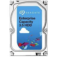 Seagate Enterprise Capacity 6TB
