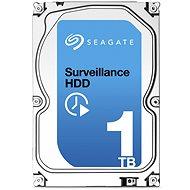 Seagate Surveillance 1TB