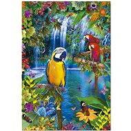 Papoušci v džungli