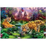 Tygři v džungli