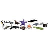 Safari Vak - Mořský život