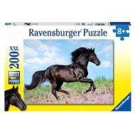 Ravensburger Černý hřebec
