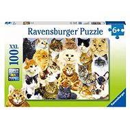 Ravensburger Kočičí chlouba