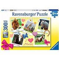Ravensburger Moje oblíbené koně