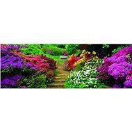 Dino Rozkvetlá zahrada panoramatické
