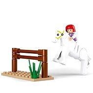 Sluban Girls Dream - Závodní kůň s překážkami