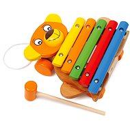 Xylofón medvěd