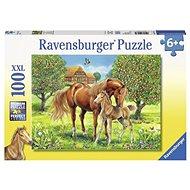Ravensburger 105779 Koně na pastvině