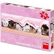 Koťátka pod dekou - panoramic