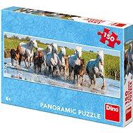 Camargští koně - panoramic