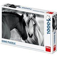 Černobílí koně