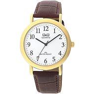 Pánské hodinky Q&Q C150J104
