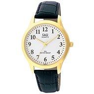 Pánské hodinky Q&Q C168J104