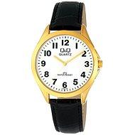 Pánské hodinky Q&Q C192J104