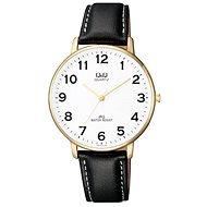 Pánské hodinky Q&Q QZ00J104Y