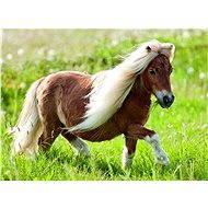 Ravensburger Malý pony