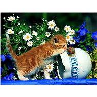 Ravensburger Zvědavé kotě