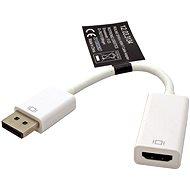 ROLINE DisplayPort (M) --> HDMI (F)