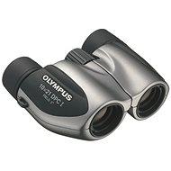 Olympus DPC-I 10x21 stříbrný