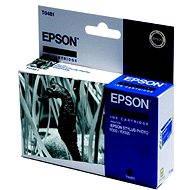 Epson T0481 černá