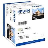 Epson T7441 černá