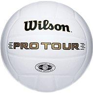 Wilson Pro Tour Indoor SZ5