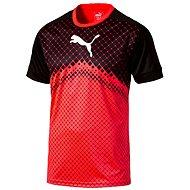 Puma IT EvoTRG Graphic Tee Red Blas XL
