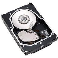 """Fujitsu 2.5"""" HDD 300GB, SAS 6G, 10000ot, hot plug, EP"""