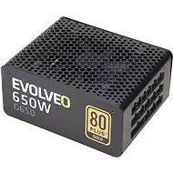 EVOLVEO G650 černý