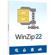 WinZip 22 Std ML DVD EU Box